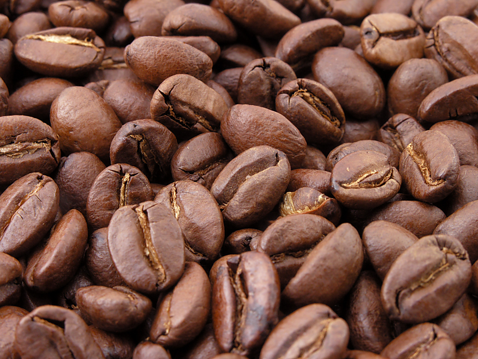 Roasted_coffee_beans[1]